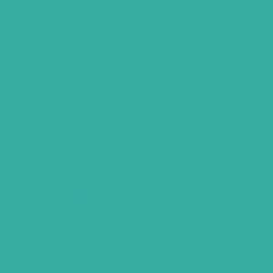 "MACmark 6600 Gloss Seafoam Green 48"" x 150'"