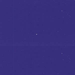 "MACmark 8300 PRO Gloss Purple Blue 48"" x 164'"