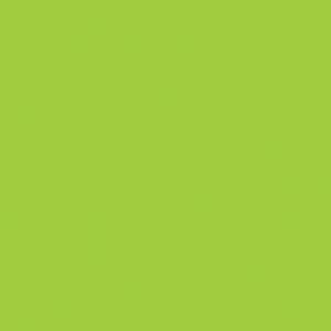 "MACmark 8300 PRO Gloss Vibrant Green 48"" x 164'"