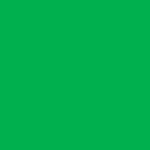 "MACmark 9800 PRO Gloss Apple Green 48"" x 164'"
