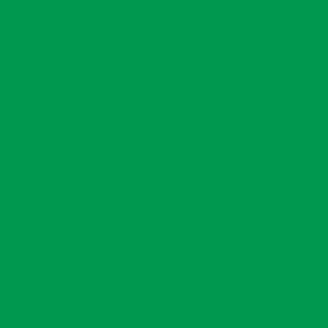 "MACmark 9700 PRO Matte Green 48"" x 164"""