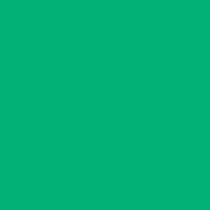 "MACmark 9700 PRO Matte Mint Green 48"" x 164"""