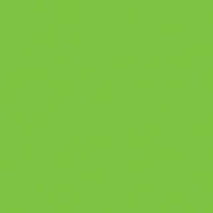 "MACmark 9700 PRO Matte Yellow Green 48"" x 164"""
