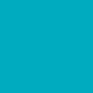 "MACmark 9700 PRO Matte Turquoise 48"" x 164"""
